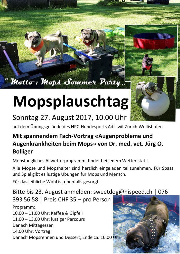 mopsplauschtag_august_2017